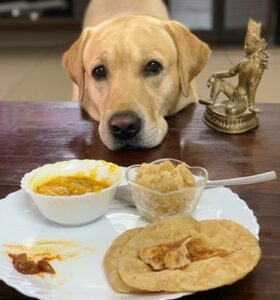 lab and food